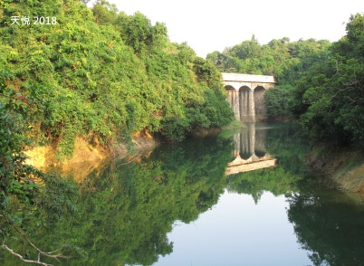 大潭水塘 1