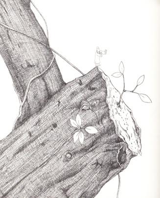 tree.p72